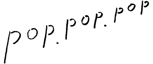 森、道、市場2019 pop.pop.pop