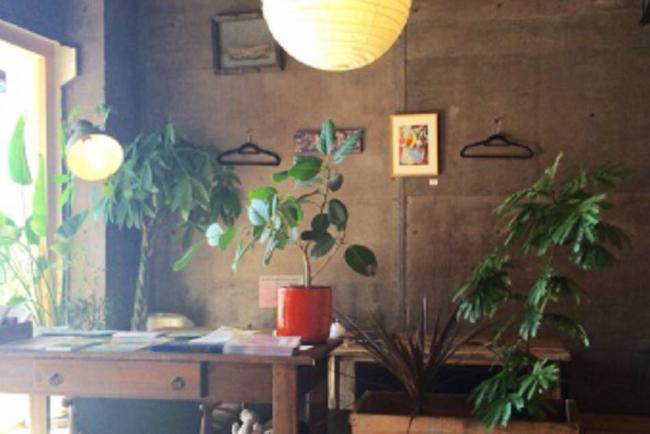 森、道、市場2019 cafe HIFUMI
