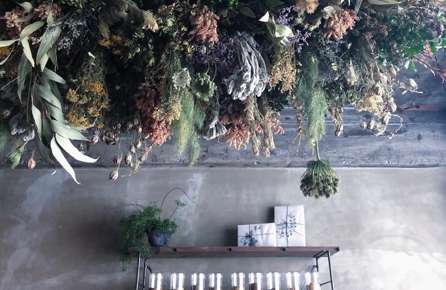 森、道、市場2019 ningulu × ∴chimugusui